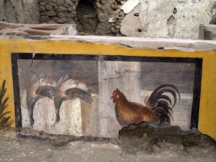 Αρχαιολογικά ευρήματα αποκαλύπτουν τις ρίζες της μεσογειακής διατροφής