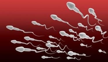 Άμεση η σχέση διατροφής και ποιότητας του σπέρματος