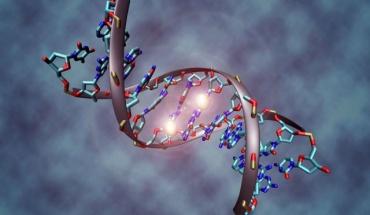 Αύξηση της ζωής κατά 25% με καλύτερη υγεία και εμφάνιση μέσω γονιδιακής θεραπείας