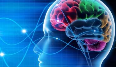 Ερευνητές εντόπισαν περιοχές ζωτικής σημασίας για τη συνείδηση