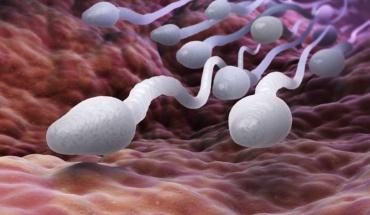 Προσοχή σε τηλέφωνα και υπολογιστές για καλύτερο σπέρμα