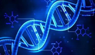 Τεστ θα εντοπίζει γονίδια που ευθύνονται για τις επιπλοκές της υποξίας κατά τη γέννηση