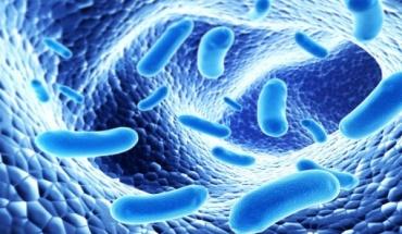 Γιατί πρέπει να παίρνετε προβιοτικά με τα αντιβιοτικά