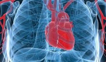 Οξεία μυοκαρδίτιδα λόγω COVID-19: Συμβαίνει και αντιμετωπίζεται