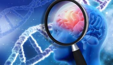Κετογονική διατροφή κατά της Νόσου Αλτσχάϊμερ; Ίσως!