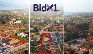 Περισσότερες από 60 επενδυτικές ευκαιρίες στην επερχόμενη  διαδικτυακή δημοπρασία της BidX1