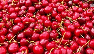 Αυτό είναι το καλοκαιρινό φρούτο που ενισχύει το ανοσοποιητικό μας