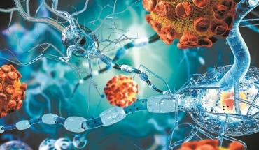 Νέα για την αντιμετώπιση του Sars-Cov-2 από μελέτες επιστημόνων παγκοσμίως