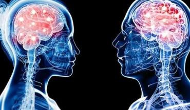 Τα δύο φύλα μοιράζονται ίδια νευρολογικά χαρακτηριστικά. Ή όχι;