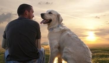 """Ο διαβήτης είναι """"μεταδοτικός"""" ακόμα και στους σκύλους μας"""