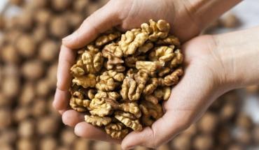 Κάποιοι ξηροί καρποί έχουν πολλαπλά οφέλη στην υγεία