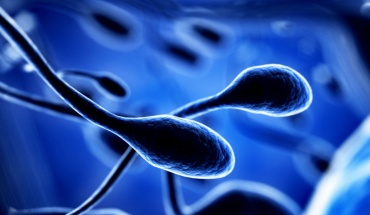 Βρήκαν ίχνη κορωνοϊού μέχρι και σε ...σπέρμα ασθενών