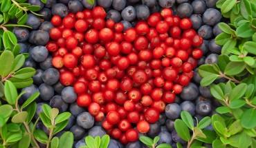 """Μεσογειακή μαζί με ελλειμματική διατροφή, είναι η """"συνταγή"""" για υγιή καρδιά"""